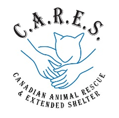 CARES Cat Shelter